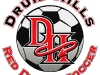 druid-hills-soccer-ball